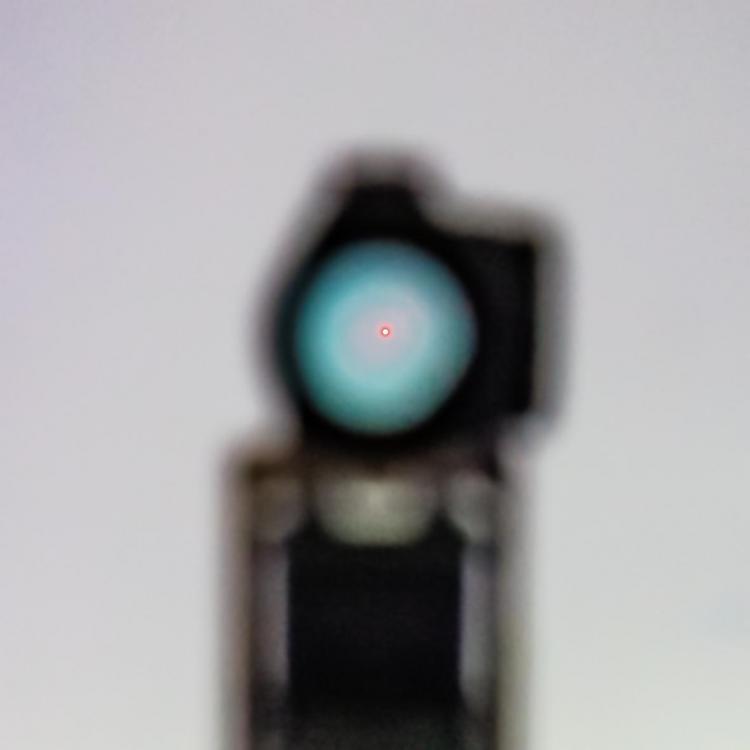 IMG_2084s.thumb.jpg.3ce1fb63f5bccbd3d62544a5514cbf54.jpg