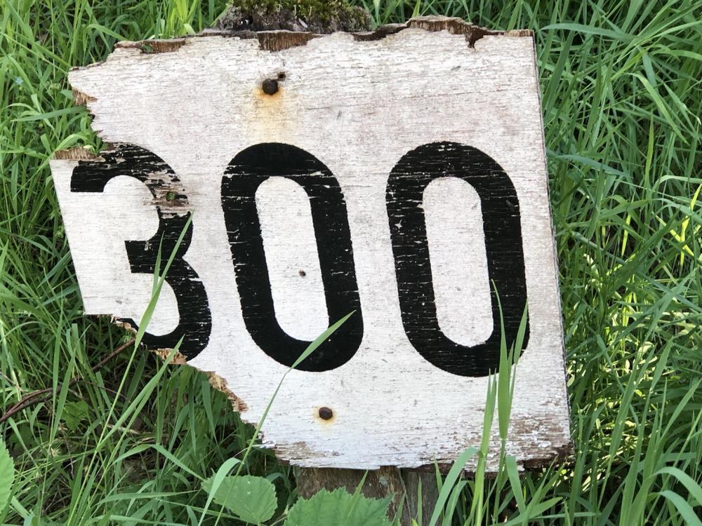 6628C964-52C1-45F4-BCD5-A12D0ED88215.jpeg